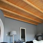 plafond houten palen 1